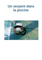 Serpent Piscine